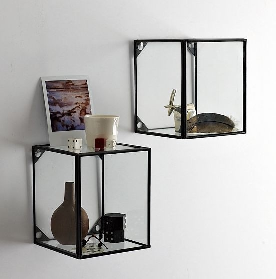 Glass + Metal Display Shelf - Traditional - Display And Wall Shelves - by West Elm