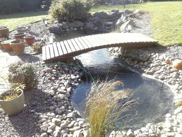 Pond clean liner repair uv replace plants replanted for Pond liner repair