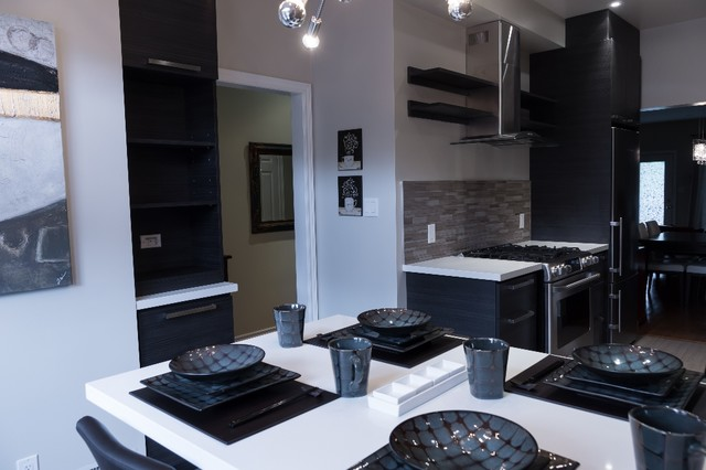 Black Beauty Kitchen contemporary kitchen