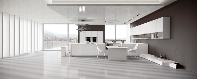 AK_04 contemporary-kitchen-cabinetry
