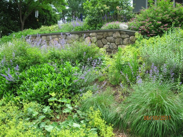 Landscaping Steep Hillside : Traditional landscape by vdhdesign