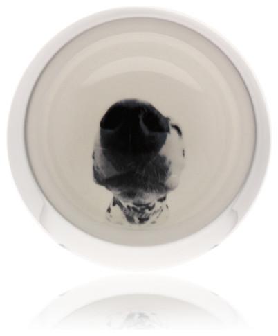 Echo Dog Bowl modern-pet-bowls-and-feeding