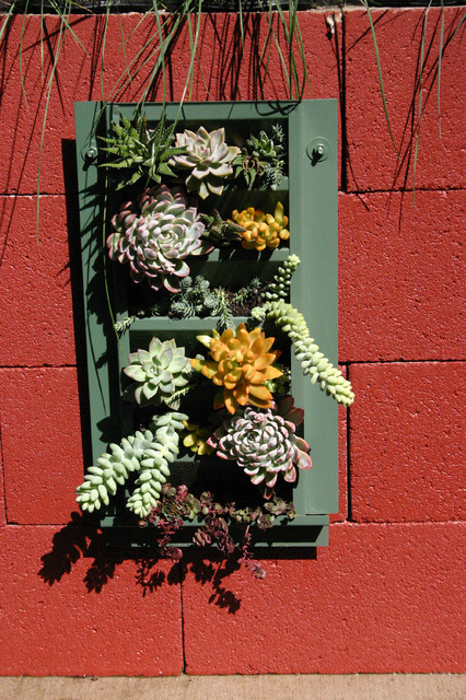 Succulent Wall for Del Mar Home Garden Show 2012 eclectic outdoor
