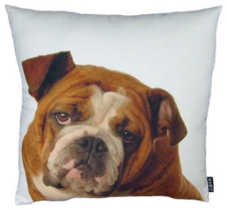 English Bulldog Pillow modern-decorative-pillows