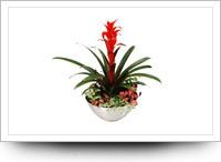 Aluminium planters asian-indoor-pots-and-planters