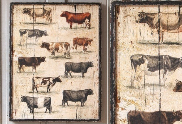 Framed Vintage Cow Breeds Farmhouse Prints And Posters