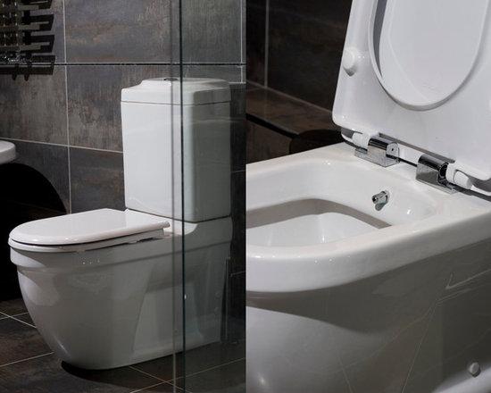 combined bidet toilet. Black Bedroom Furniture Sets. Home Design Ideas