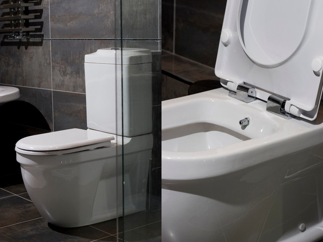 Toilet And Bidet Combo Custom Bidet Toilet Combo Roselawnlutheran Design  Decoration