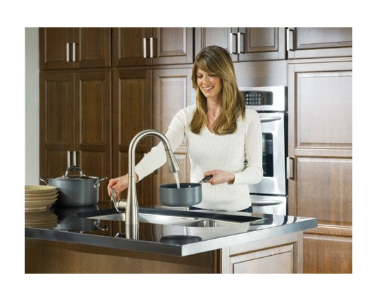 Moen Arbor Classic stainless one-handle high arc pulldown kitchen faucet - The Arbor™ line delivers streamlined and timeless transitional styling that meets personal preferences and houses a host of performance features that make Arbor extremely flexible and friendly to use.