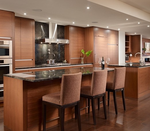 Four Seasons Residence contemporary-kitchen