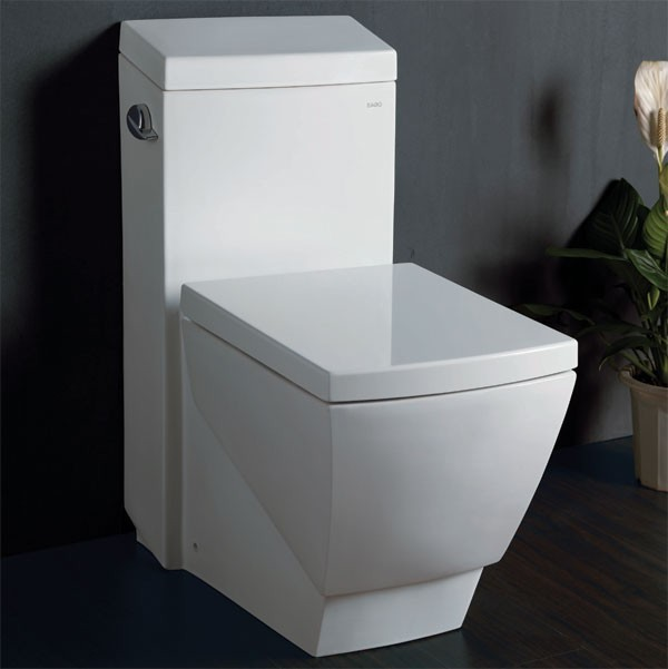 eago tb336 one piece high efficiency eco friendly toilet modern toilets new york by