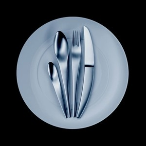 Mono Flatware C2 5-Piece Dinner Set modern dinnerware