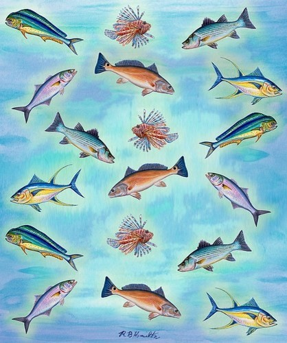 Betsy Drake Assorted Fish Throw / Blanket - beach style - throws