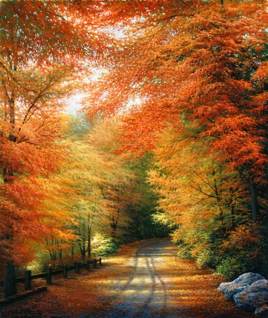 Autumn in new england wall art contemporary wallpaper for Autumn wall mural