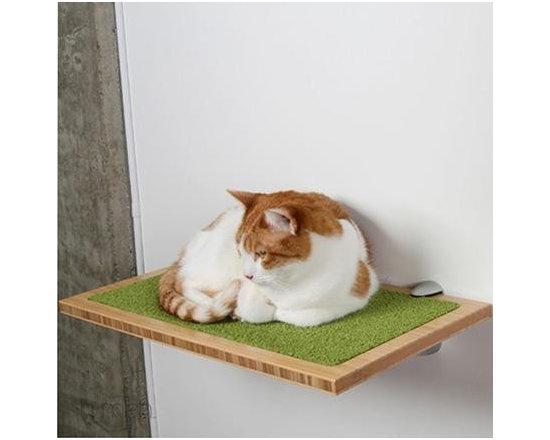 Square Cat Habitat by Buddha -