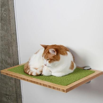 Square Cat Habitat by Buddha home-decor