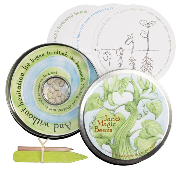 Fairy Tale Garden Tin contemporary plants