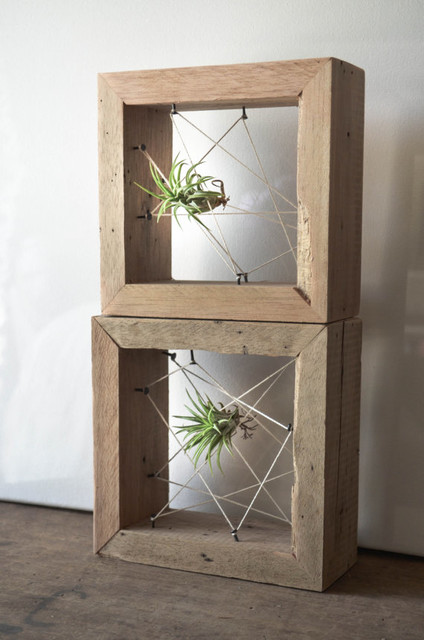 Reclaimed Wood Air Plant Holder By Triple Seven Recycled