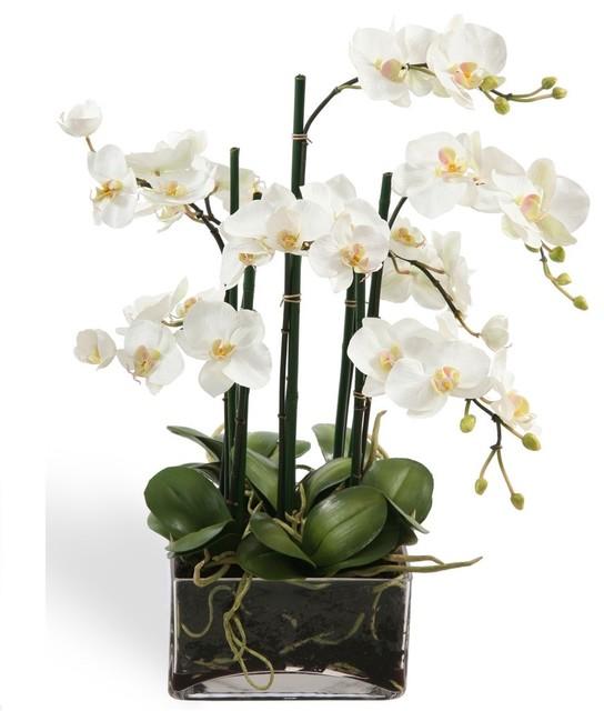 Floral centerpieces contemporary plants san