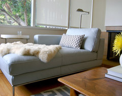 Niche Interiors: San Francisco Interior Designer midcentury-living-room