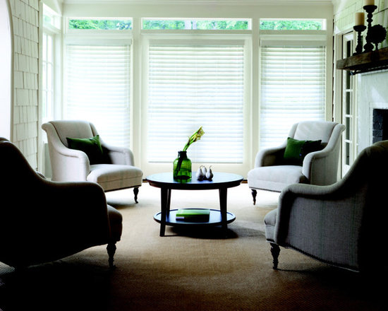 """Levolor 2 1/2"""" Faux Wood Blinds - Levolor 2 1/2"""" Visions Faux Wood Blinds from American Blinds is offered in an elegant array of painted and stained finishes. Made from a durable polymer , they will never chip, crack or peel, even in high moisture areas. Ideal for large windows, these blinds offer a clearer view out than most horizontal blinds. These faux wood blinds are offered with the option to upgrade to cordless operation, which is safer for kids and pets."""