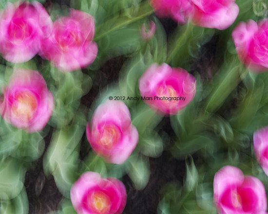 Abstract Pink Flowers Motion - Abstract Pink Flowers Motion © Andy Mars Photography