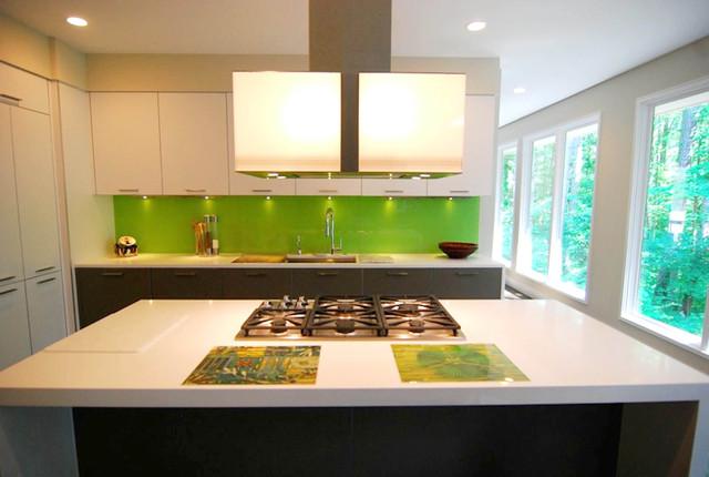 Cooper Kitchen contemporary-kitchen