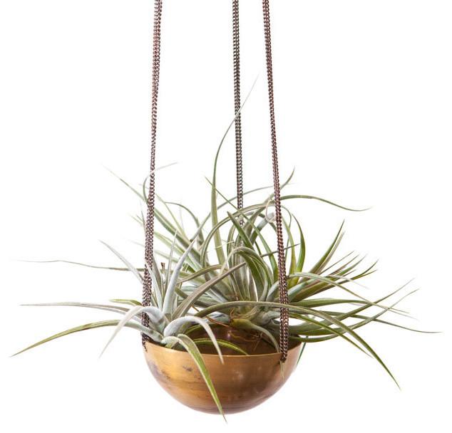 Gold Medal Hanging Planter Modern Indoor Pots And