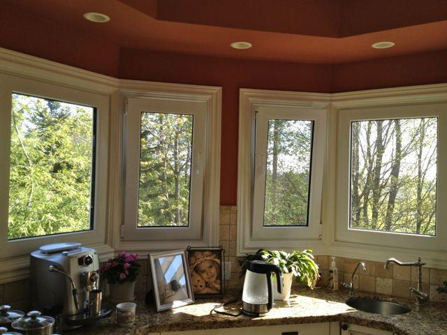 Eco Choice Windows contemporary-windows