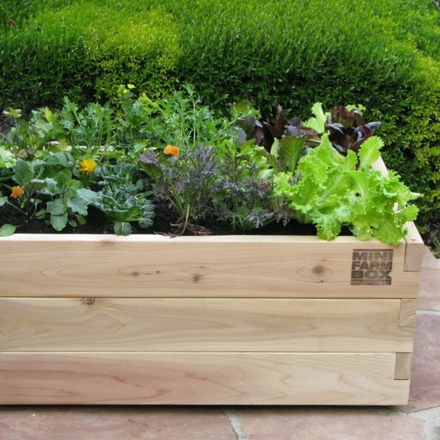Rolling farm box in designer pots eclectic outdoor for Garden box landscape and design