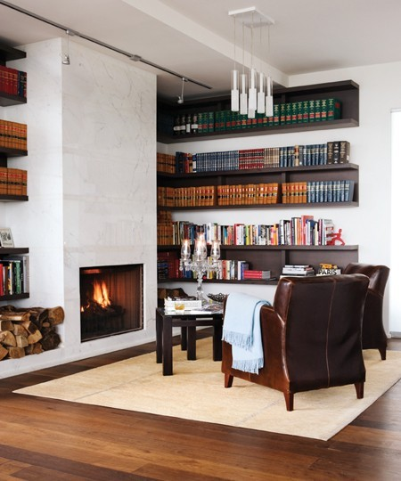 Custom Library contemporary-home-office-accessories