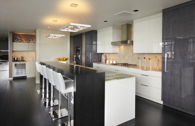 Penthouse Remodel modern-kitchen