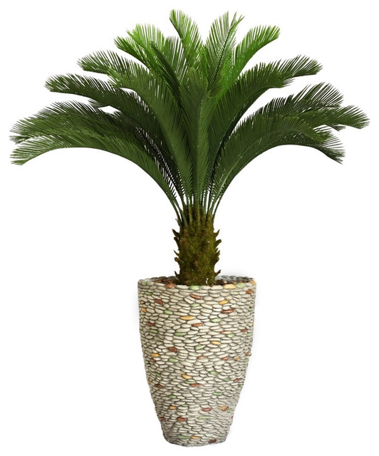 Laura Ashley 62-inch Tall Cycas Palm Tree in Fiberstone Planter - Contemporary - Indoor Pots And ...