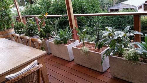 Balcony Garden The Lovely Plants