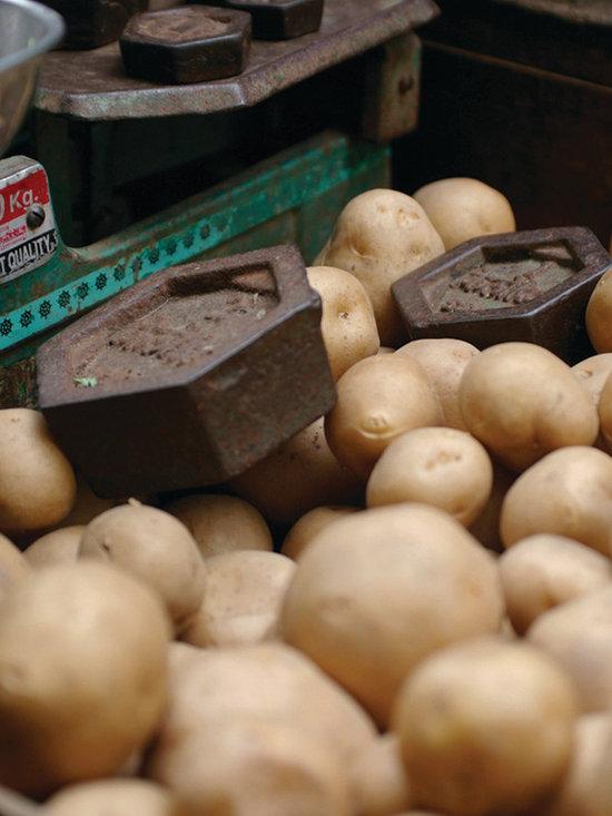 Potatoes - Travel photography, film, 8.5 x 11 in., Original, unique