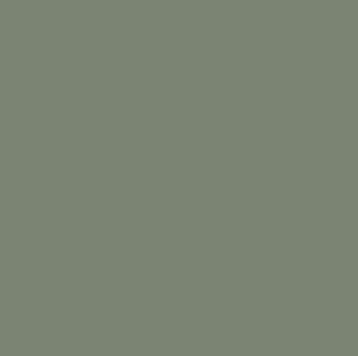 SW6186 Dried Thyme by Sherwin-Williams paints-stains-and-glazes