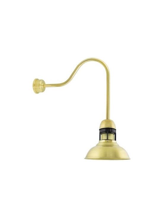 The Sydney Brass Gooseneck Light -