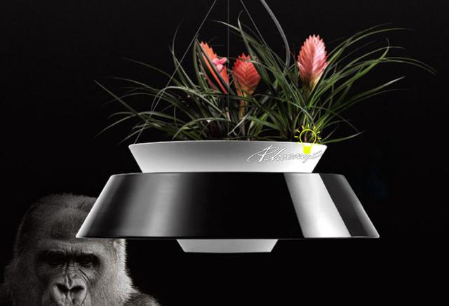 Pendant Lighrting contemporary-pendant-lighting