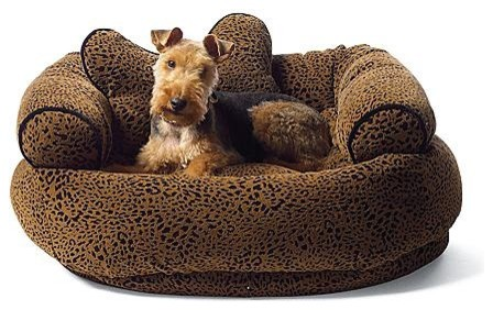 Flocked Animal Print Comfy Couch Pet Bed Dog Bed - traditional ...