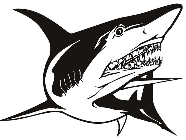 Great White Shark Animals Under Sea Wall Decal Modern