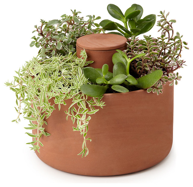 Self Watering Planter Contemporary Indoor Pots And Planters