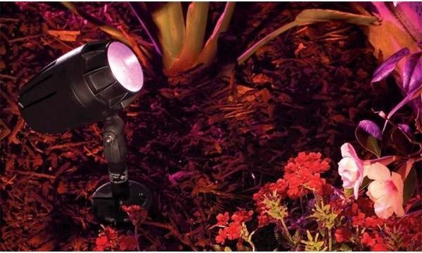 Pentair IntelliBrite Color 12V LED Landscape Light contemporary-landscape-lighting