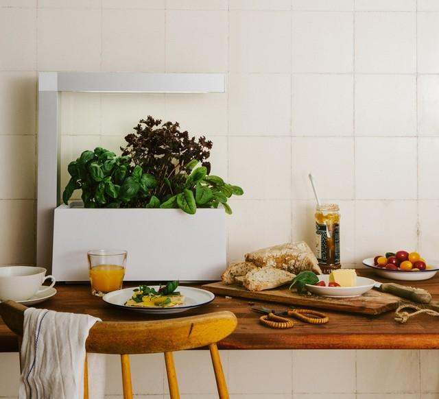 Id es de luminaires pour la salle manger contemporary - Idee de peinture pour salle a manger ...