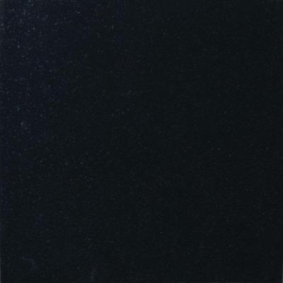 Granite tile 18 in x 18 in absolute black granite floor and wall tile tabsblk contemporary - Home depot black granite tile ...