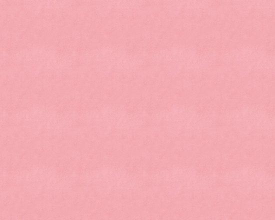 Watermelon Minky Fabric -