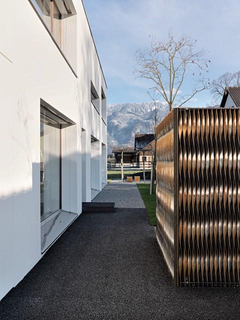 Diepoldsau contemporary-landscape