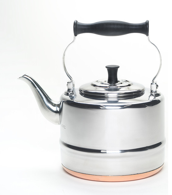 BonJour Stainless Steel Two-quart Teakettle contemporary-coffee-makers-and-tea-kettles