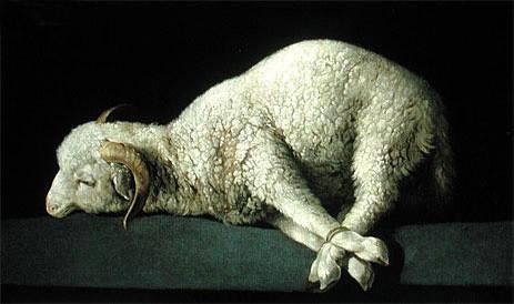 Agnus Dei | Zurbaran | Painting Reproduction artwork