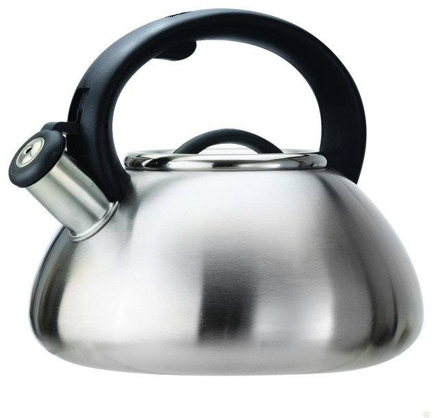 Whistling Kettle Stainless contemporary
