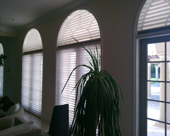 Arched and Motorized Hunter Douglas Silhouettes -
